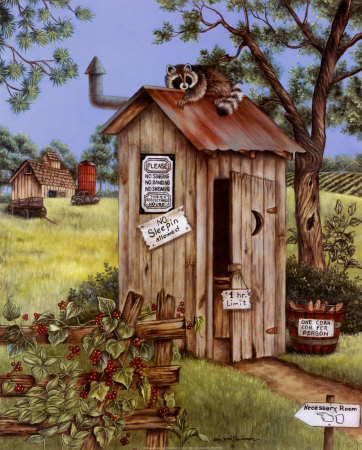 outhouse-raccoon.jpg.99e46a47381620626c042bd0d63436c5.jpg